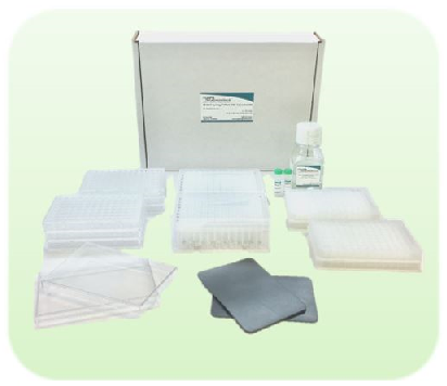 96 well Synergy™ Plant DNA Extraction Kit
